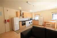Sharperton House, Shieldfield (R), 5 bed Apartment / Flat in Shieldfield-image-1